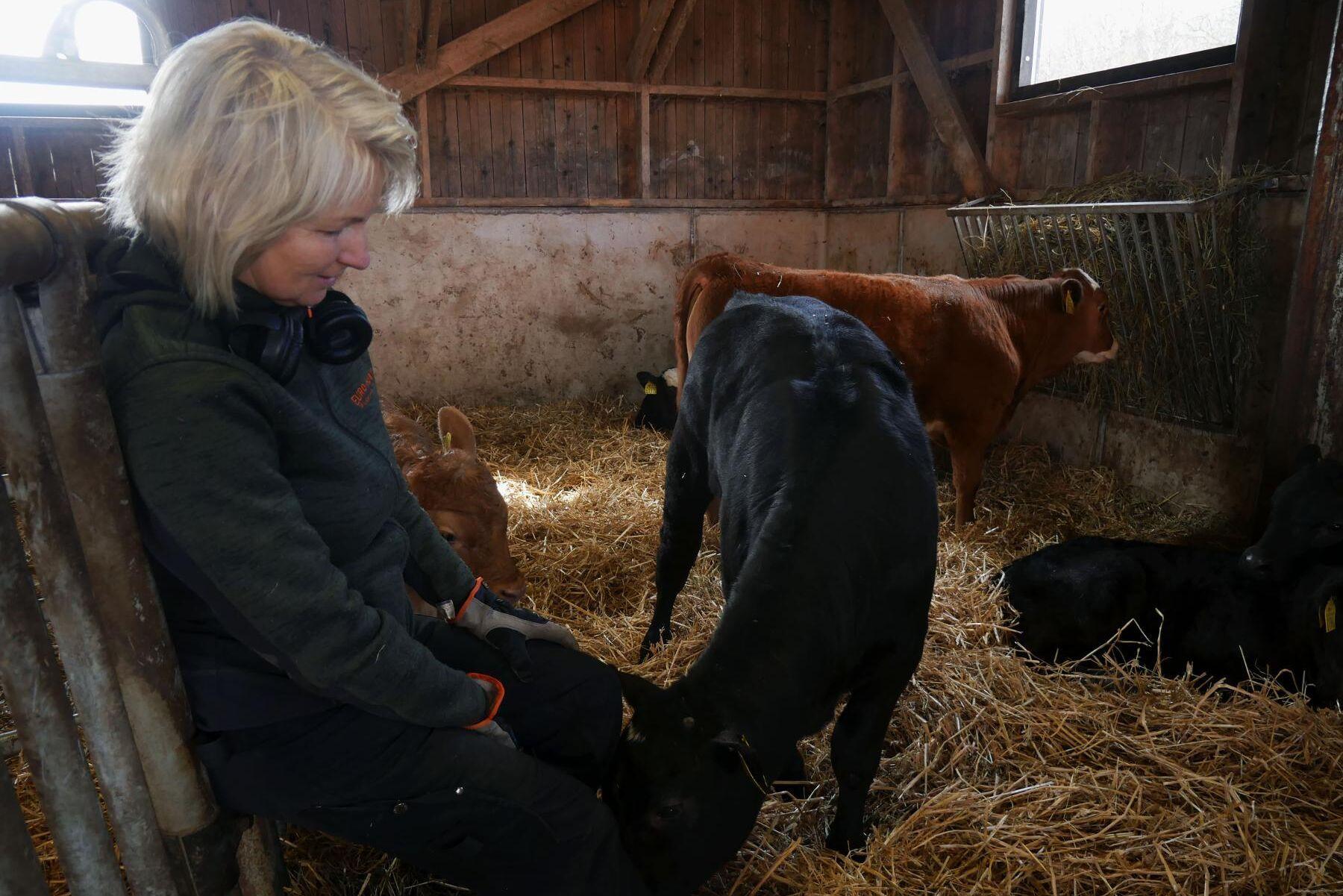 """""""Det går inte en dag när jag inte längtar till att komma ut och vara med djuren"""", säger Tiina Olofsson."""