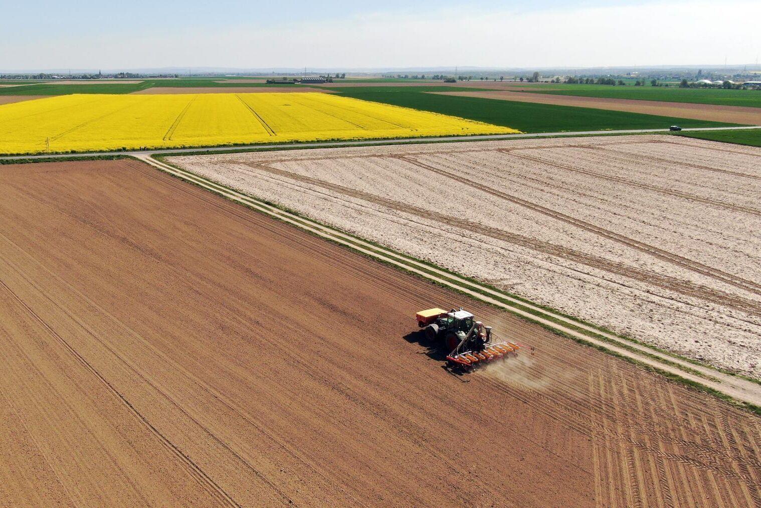 En lantbrukare sår på ett torrt fält utanför staden Düren i västra Tyskland 21 april i år.