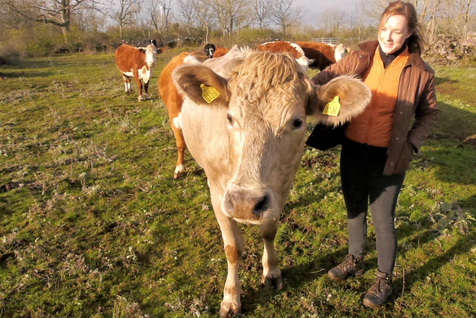 Caroline Eriksson har upplevt flera långa perioder av torka sedan hon blev lantbrukare på Öland.