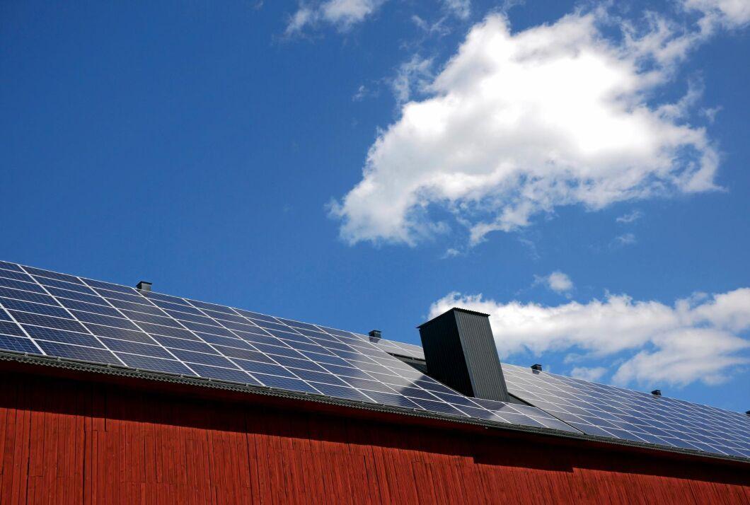 På fyra år har den totala effekten på landets solcellsanläggningar femfaldigats. Från 140 MW 2016 till 698 MW 2019.