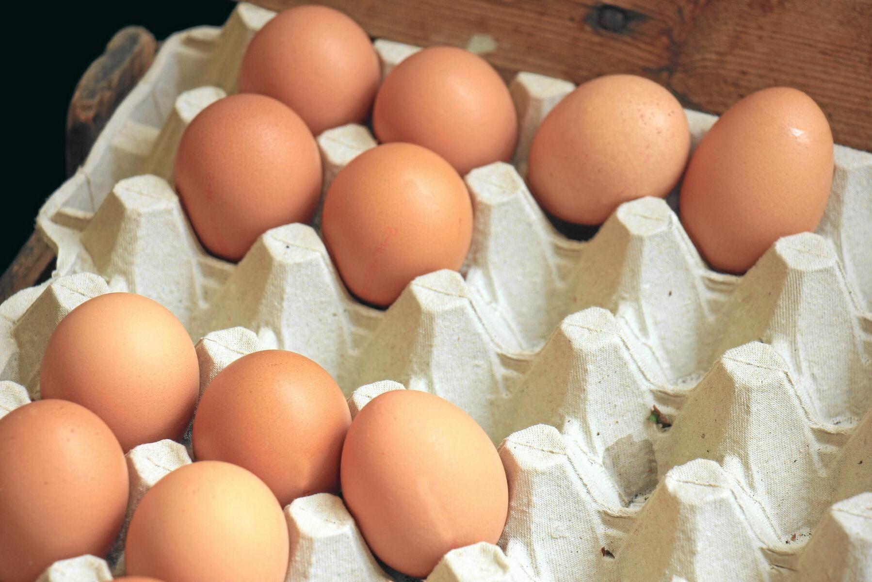 Halterna av dioxid och PCB har minskat med 33 procent i de ekologiska äggen.