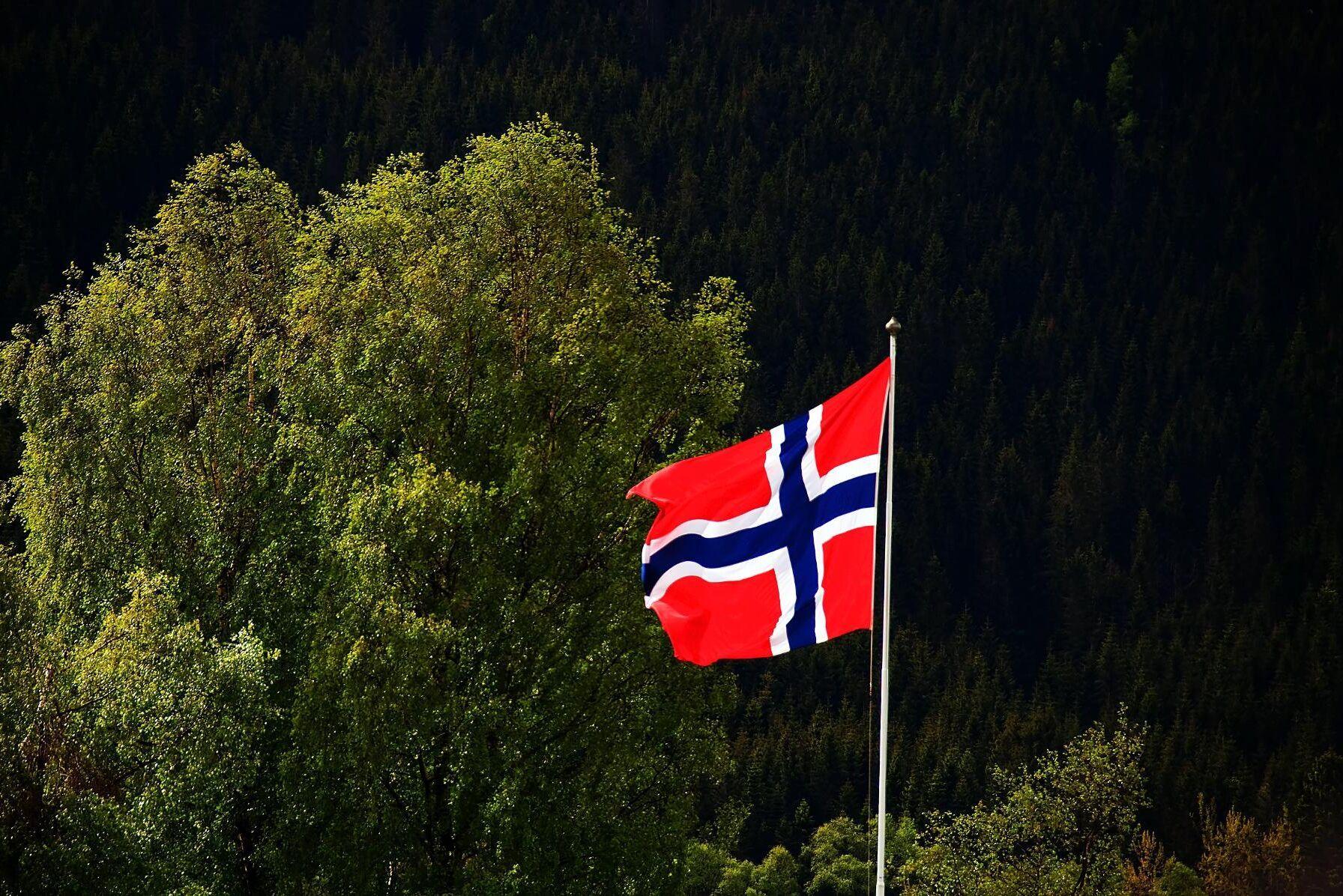 Snabbt ökande skogspriser i Norge innebär fortfarande rea med svenska mått mätt.
