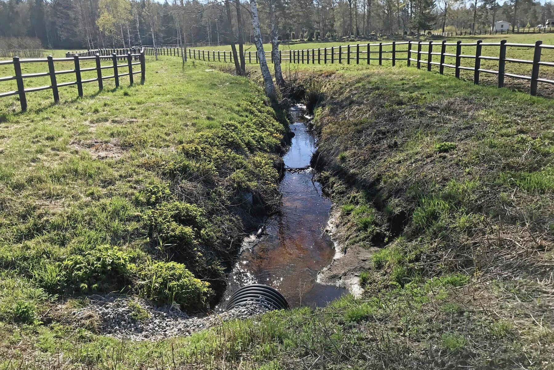 Inom Julmyra Horse Center har det genomförts stora åtgärder för att förbättra hagmiljöer och minska näringsläckage.