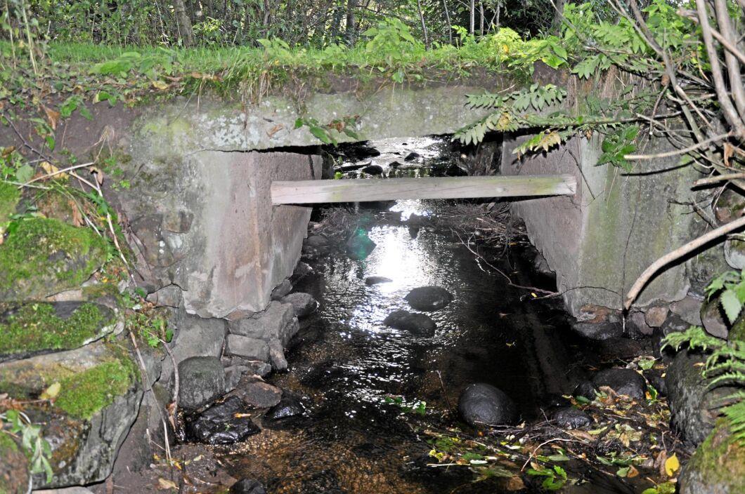 Dyra brobyten. Trafikverket vill slopa på kravet på unika konstruktionshandlingar för småbroar på landsbygden. Typritningar skulle göra en broombyggnad billigare.