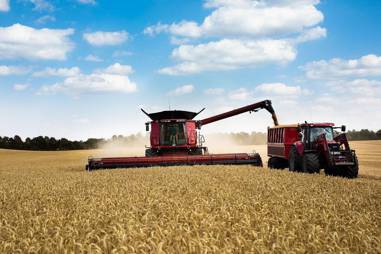 Det danska företaget håller dörren öppen även för svenska odlare.