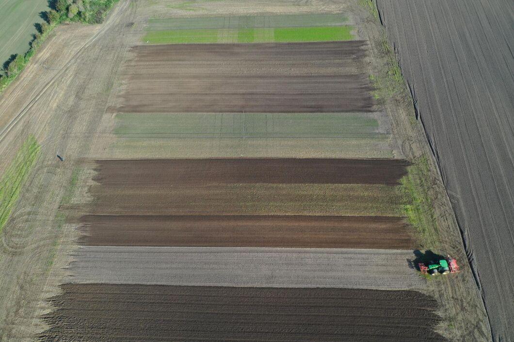 Det eskalerande problemet med resistent gräsogräs var bakgrunden till att ett projekt drogs igång av de danska rådgivningsföretagen Velas för fyra år sedan. Demonstrationsodlingar på tre platser i Danmark visar effekterna av integrerade åtgärder för att bekämpa tre gräsogräs: renkavle, italienskt rajgräs och råttsvingel. Bilden är tagen i oktober 2019 när höstvete såtts på hela arealen.