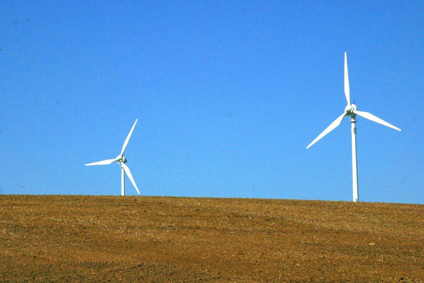 EU misstänker att elpriserna hålls artificiellt låga.
