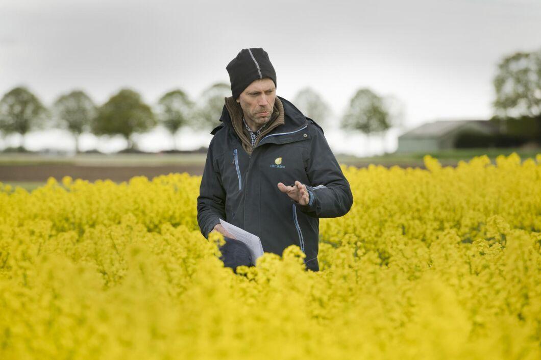 Paul Leteus, HIR, växtodlingsrådgivare.