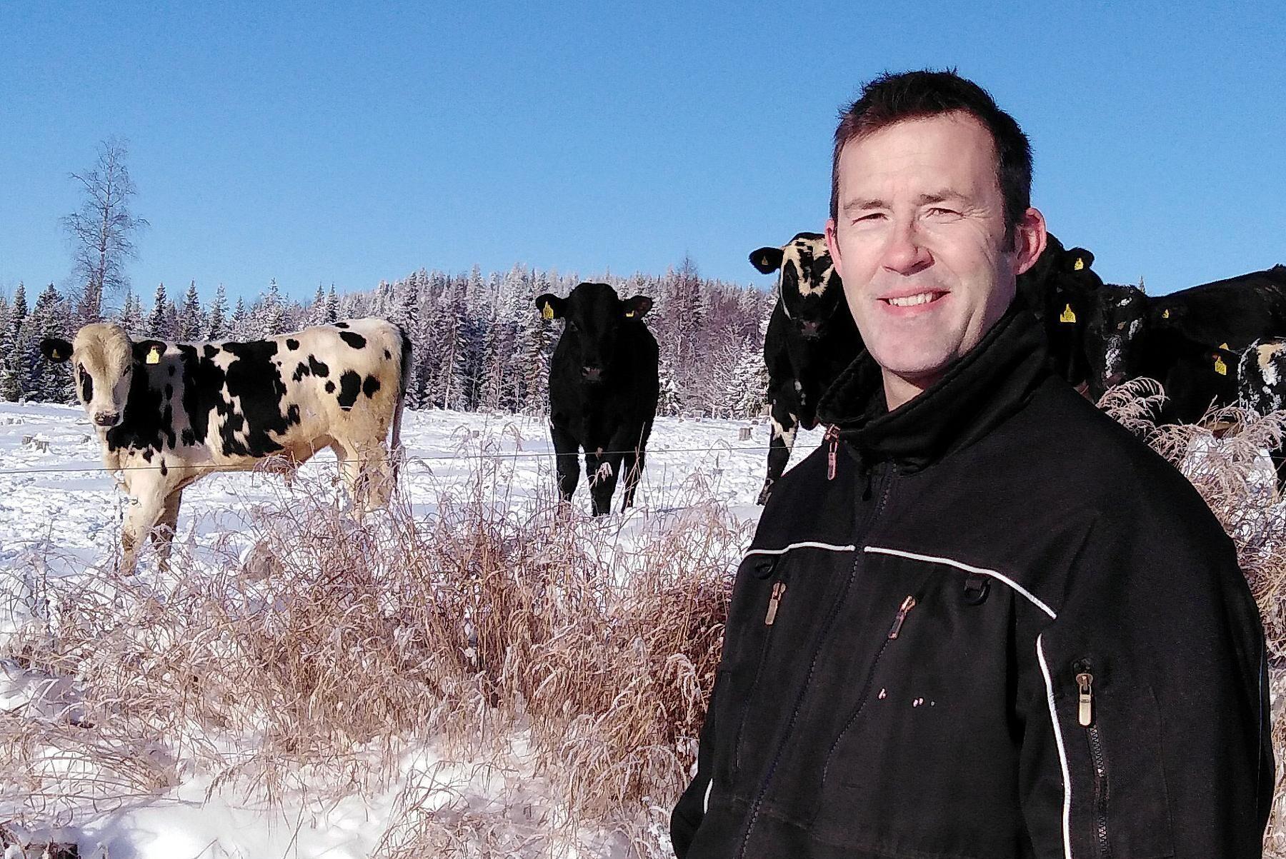 Jörgen Norén, köttbonde utanför Malå, sköter försäljningen från sin gårdsbutik.
