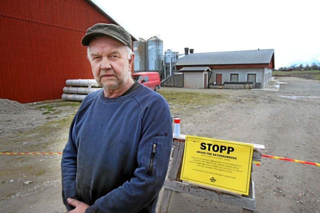 Värphönsanläggningen Bärsta Gård, utanför Nyköping, har drabbats av fågelinfluensa.