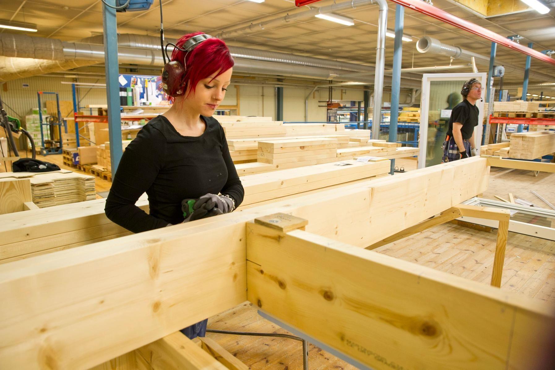 Lindbäcks i Piteå bygger trähusmoduler, här är det Emmeli Persson som jobbar i fönsterstationen i fabriken i Öjebyn.