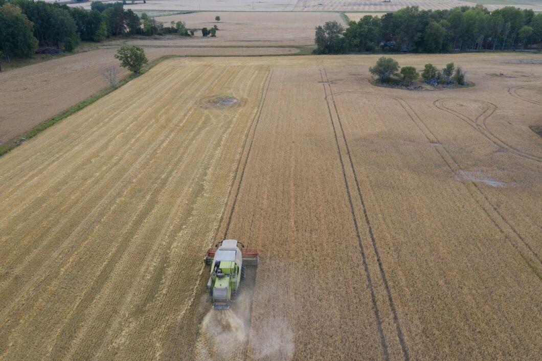 Lantbrukare som brukar över 100 hektar motsvarar 12 procent av jordbruksföretagen (arkivbild).