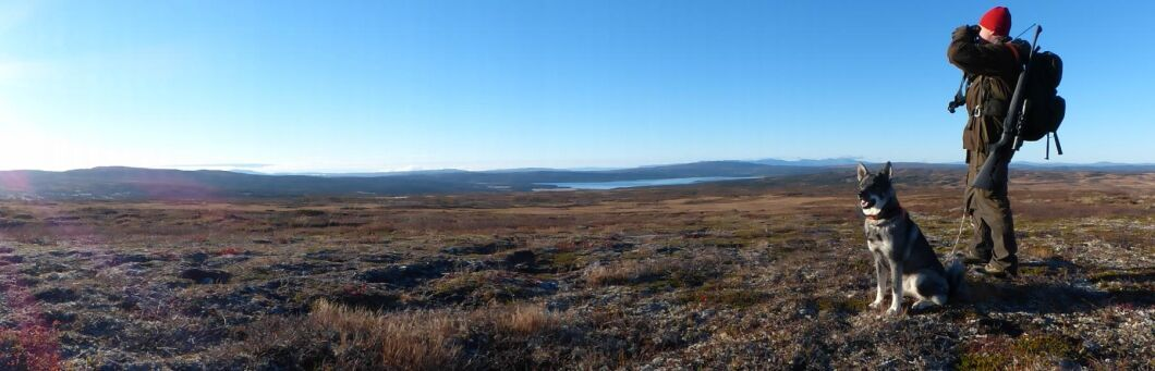 Fjelljakt har 16000 hektar sammanhängande jaktmark utan några vägar. Enda sättet att kunna utnyttja marken är att använda helikopter. Både för att flyga ut jägare och för att ta hem fällda älgar.