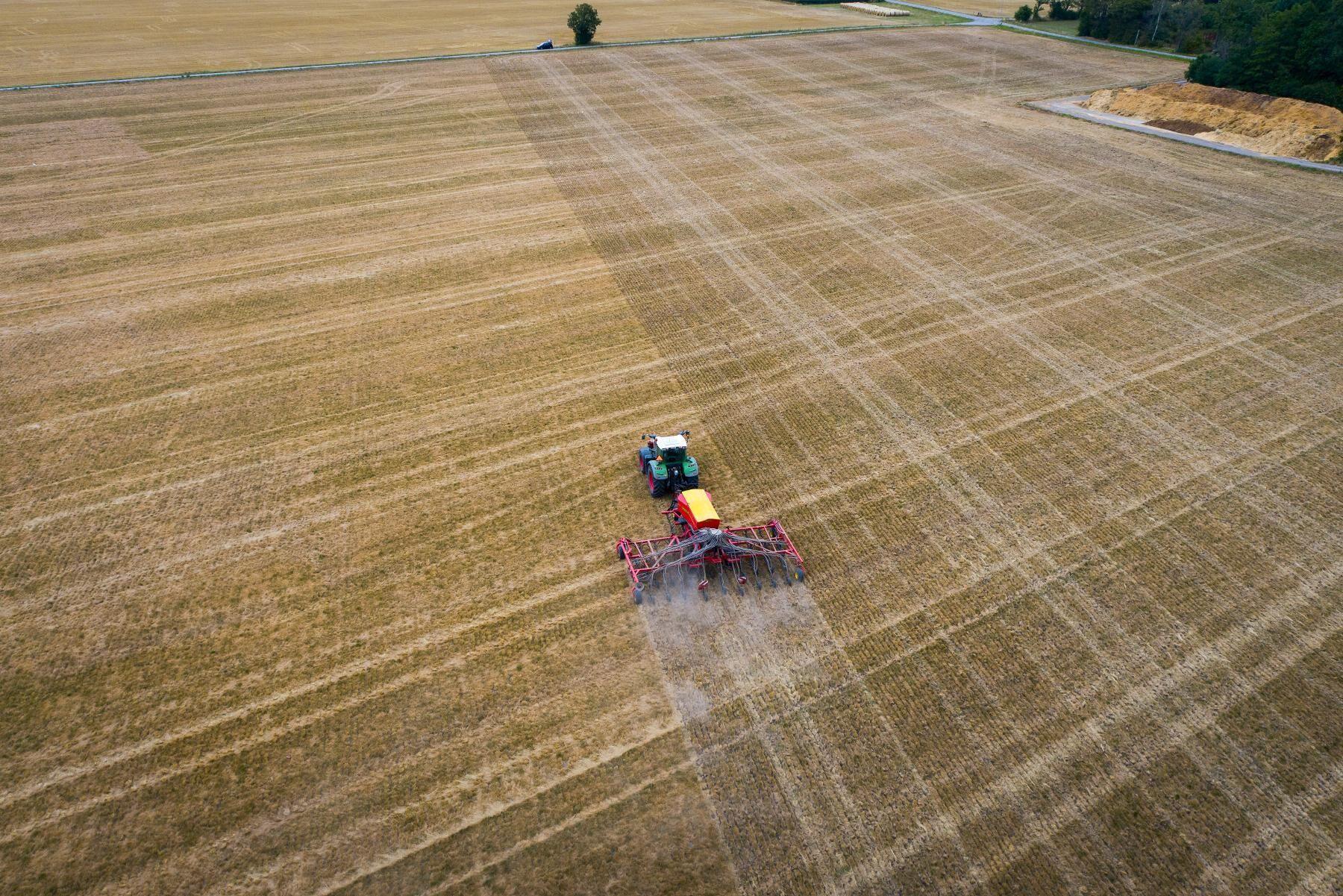 Forskarna ska i uppföljningsstudier bland annat studera hur denitrifikation påverkas av mängden bevuxen mark, mångfalden i växtföljden, olikheter mellan grödorna samt odlingsåtgärder och effekter av insatsmedel. Arkivbild.