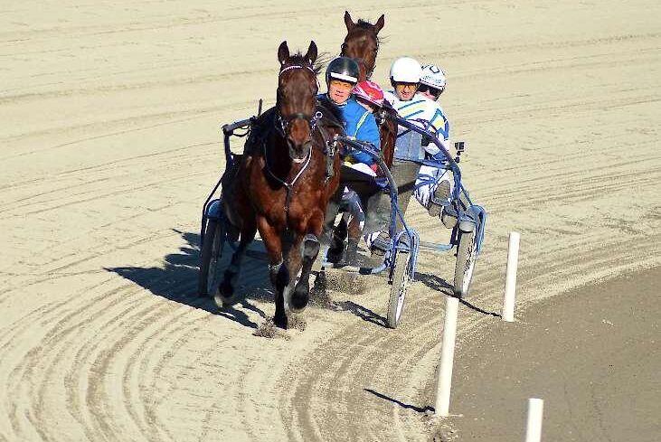 Högsta förvaltningsdomstolen godkänner travkörning med häst som avdragsgill friskvård.