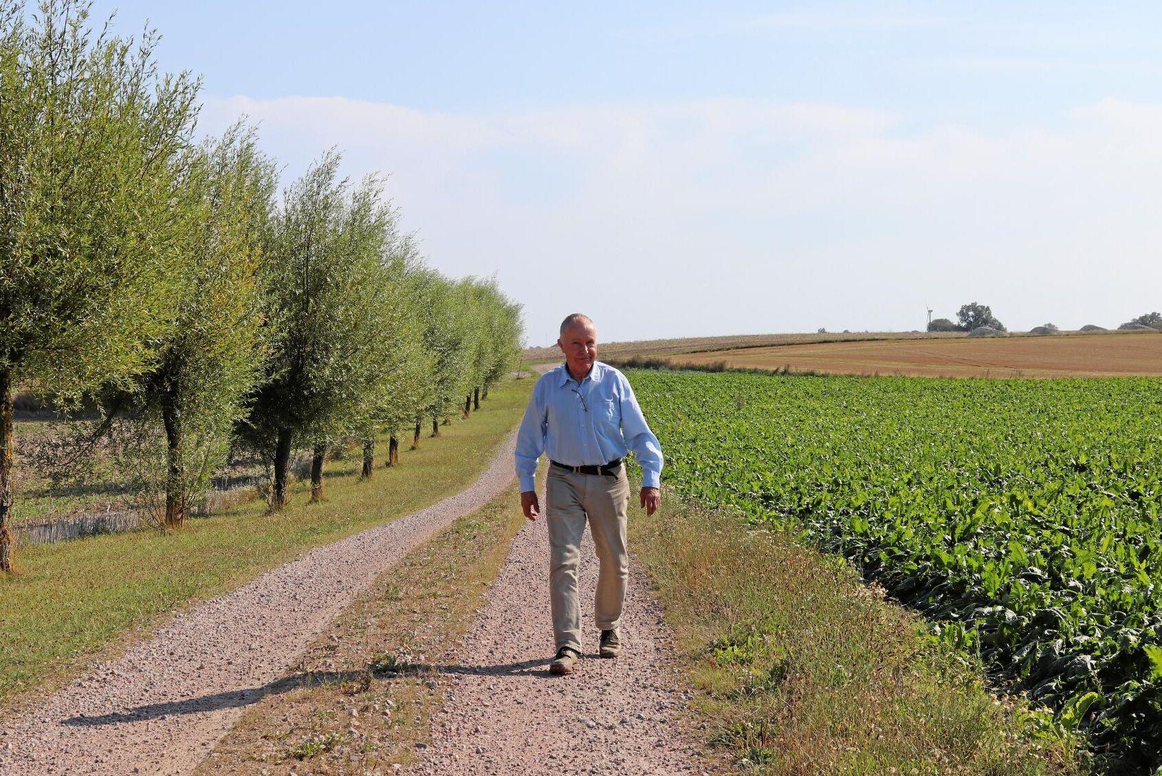 Anders Reimer hoppas på en skörd något över femårsgenomsnittet i år även om sockerbetorna nu lider i det torra och varma vädret på Villiegården i skånska Villie norr om Trelleborg. I år odlar han 44 hektar men planerar att utöka arealen 10 procent 2020 för att få del av den nya volymbonusen.
