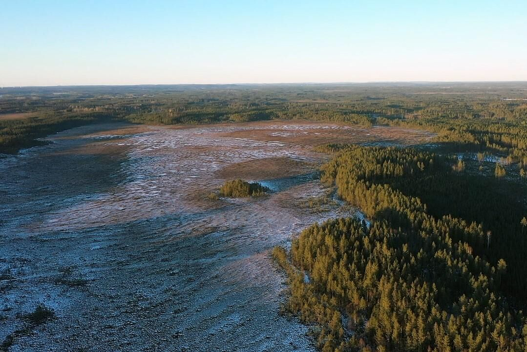 I ett gemensamt projekt har Sveaskog och Naturskyddsföreningen restaurerat mossen Trunhatten som nu ska bli naturreservat.