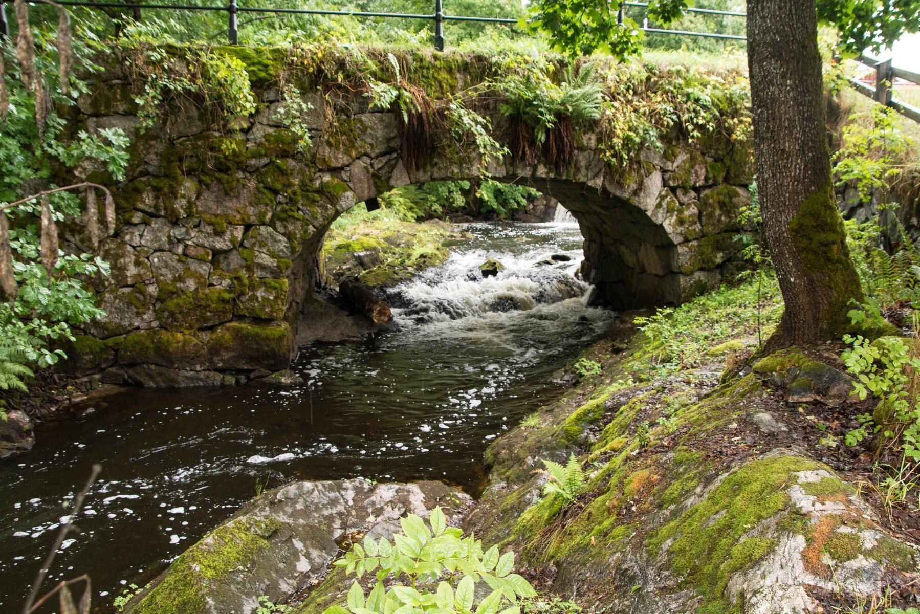 Små vattendrag är särskilt känsliga för överuttag av vatten.