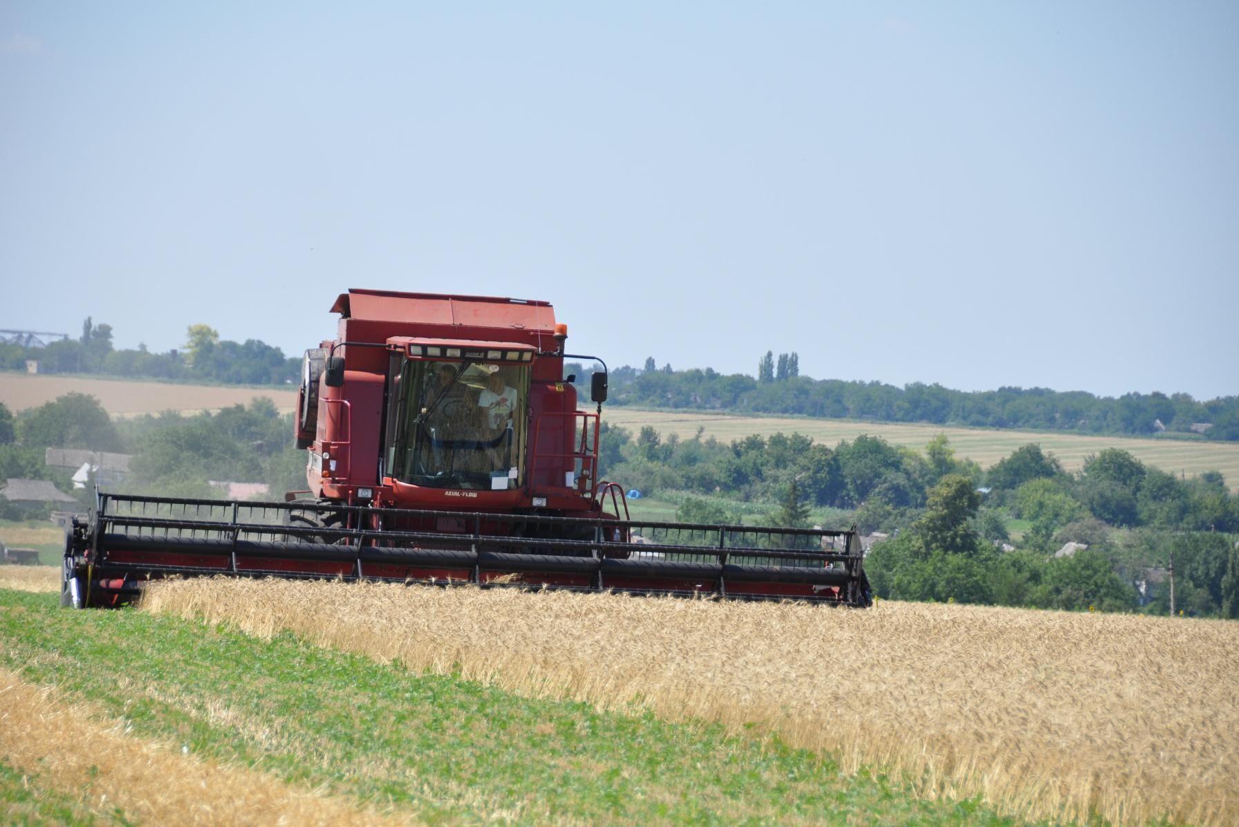 Ukraina är en betydande producent och exportör av vete.