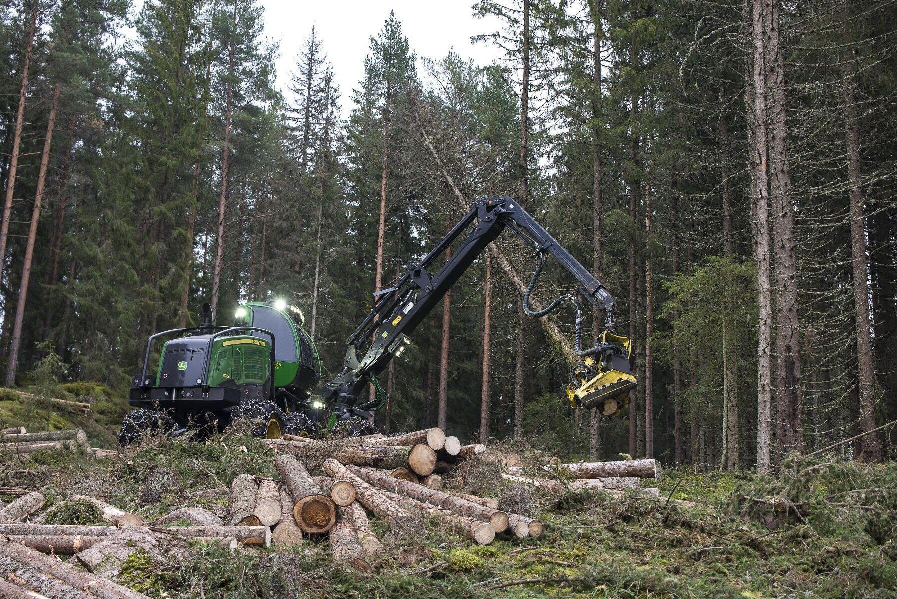 Sedan 2009 har koldioxidupptaget i den norska skogen minskat snabbt. Nu vill regeringen vända utvecklingen med en rad åtgärder i sin klimatplan för 2021-2030.