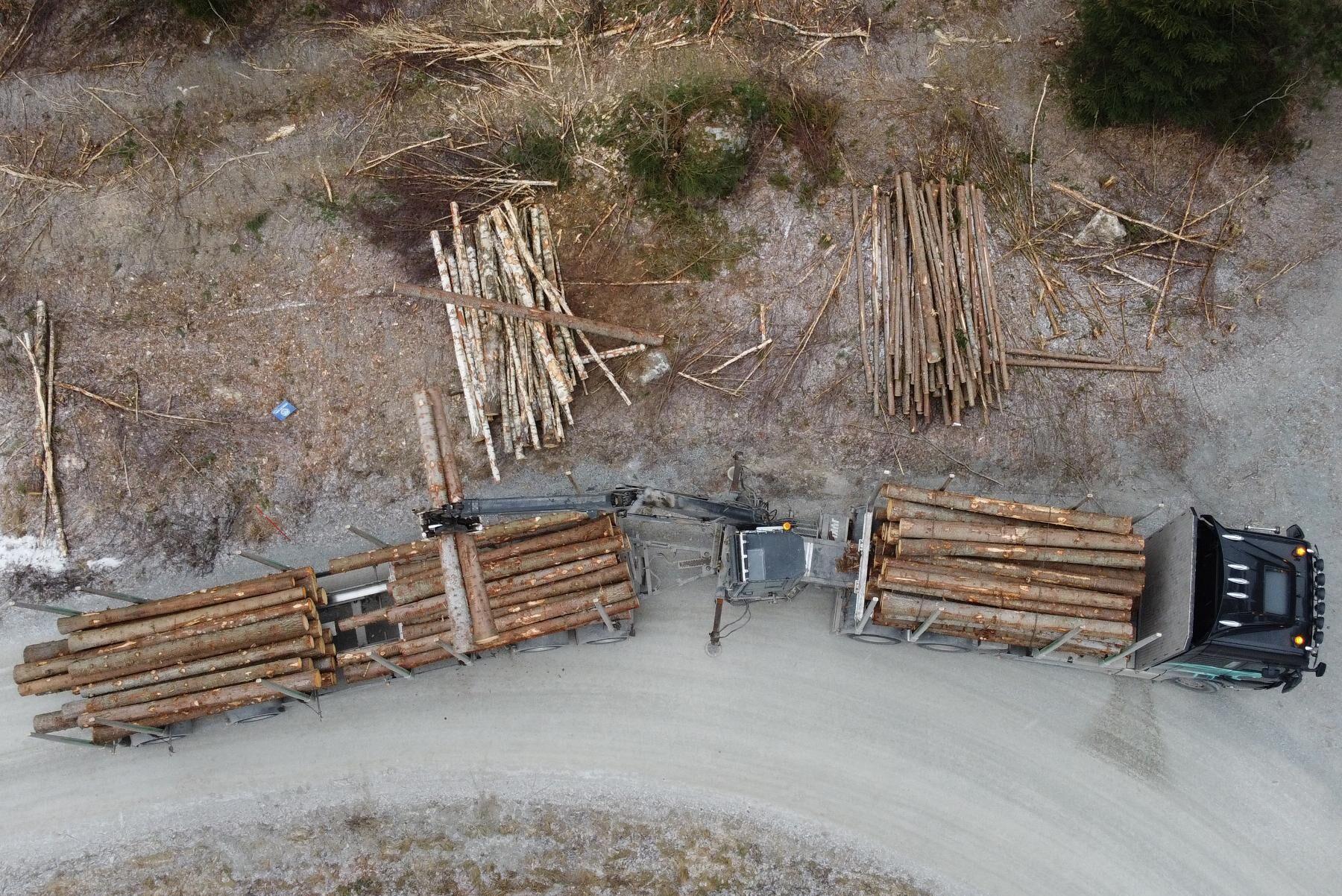 En timmerbil lastar timmer vid en avverkning i en skog i Enköping.