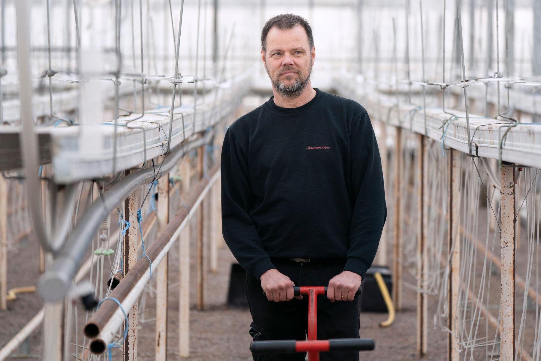 Mats Olofsson på Vikentomater utanför Höganäs förlorade i våras stort när restaurangernas inköp försvann i spåren av corona.