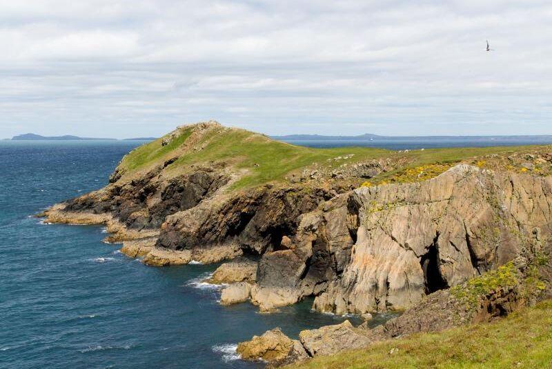 I tre dagar har en räddningsoperation i södra Wales pågått sedan ett 60-tal får jagats över en klippkant. Arkivbild (Bilden föreställer en annan klippa i Wales)