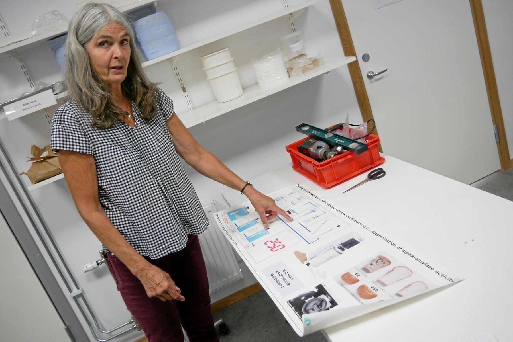Frökontrollens analyser av eget utsäde visar att det skett en stor ökning av stinksot 2019 och 2020 jämfört med tidigare år. Matilda Lönnemark, vd Frökontrollen Örebro, tycker att det är en oroväckande hög andel i år.