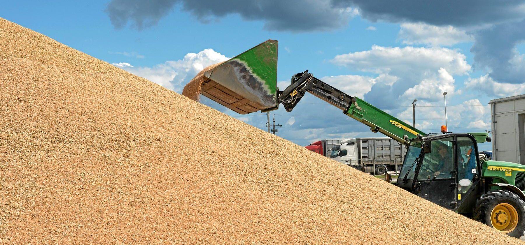 Via Scangrain kan kunden beställa rätt kvalitet på spannmål eller specialgrödor.