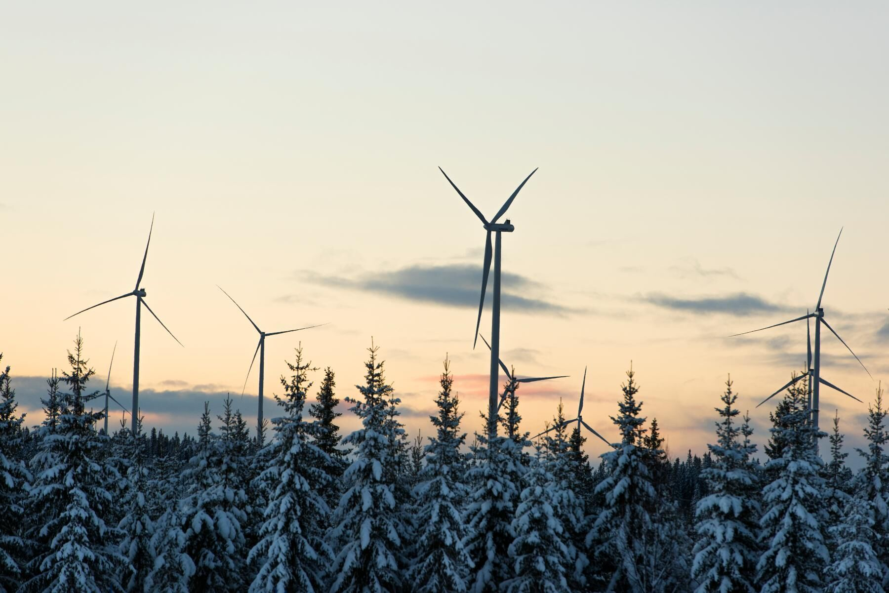 Vindkraften måste liksom övriga stora elproducenter kunna delta både i normaldrift, nöddrift och återuppbyggnadstillstånd av kraftnätet.