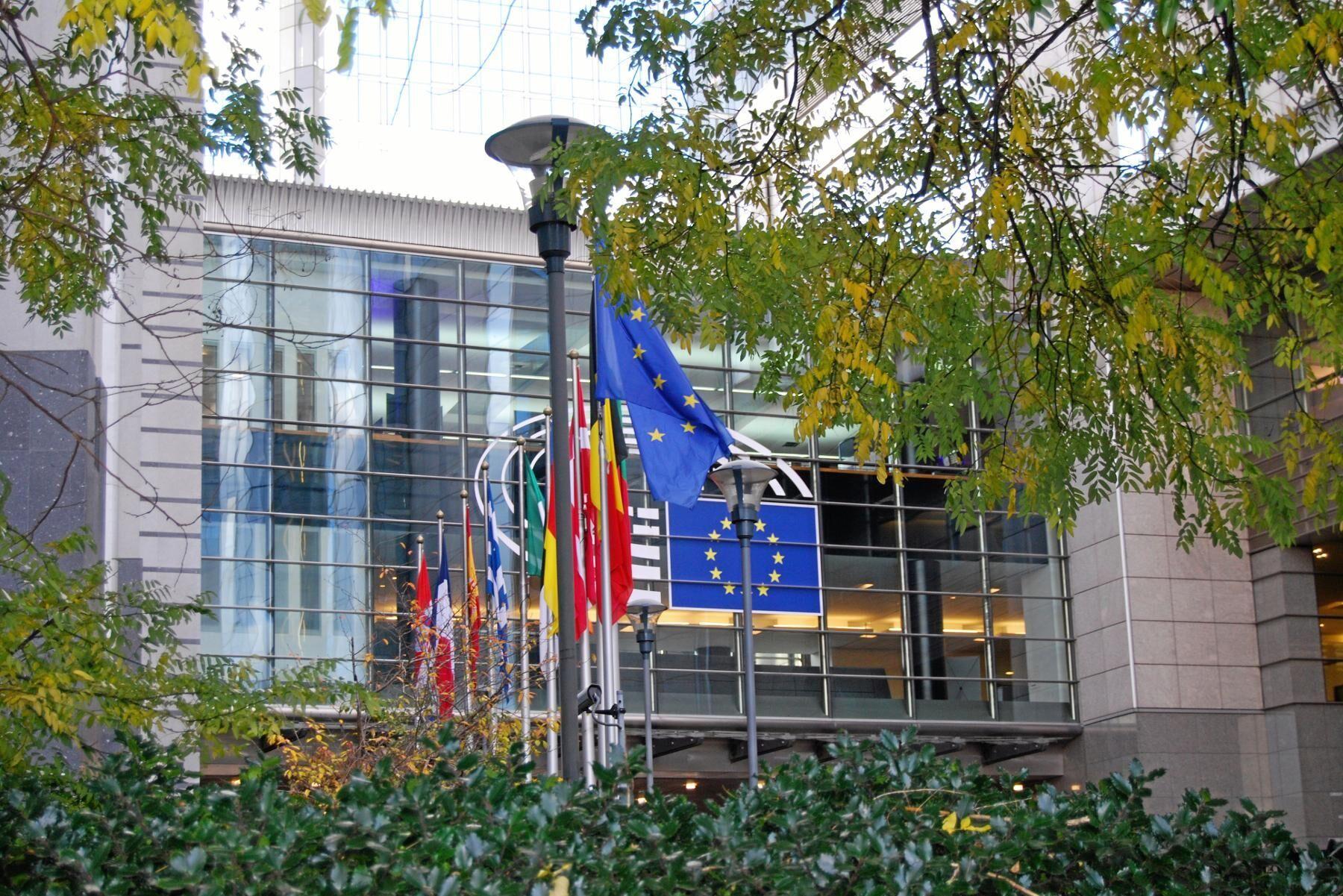 EU-parlamentets ingångsposition i förhandlingarna med medlemsländerna om en övergångsperiod för cap bereds just nu.