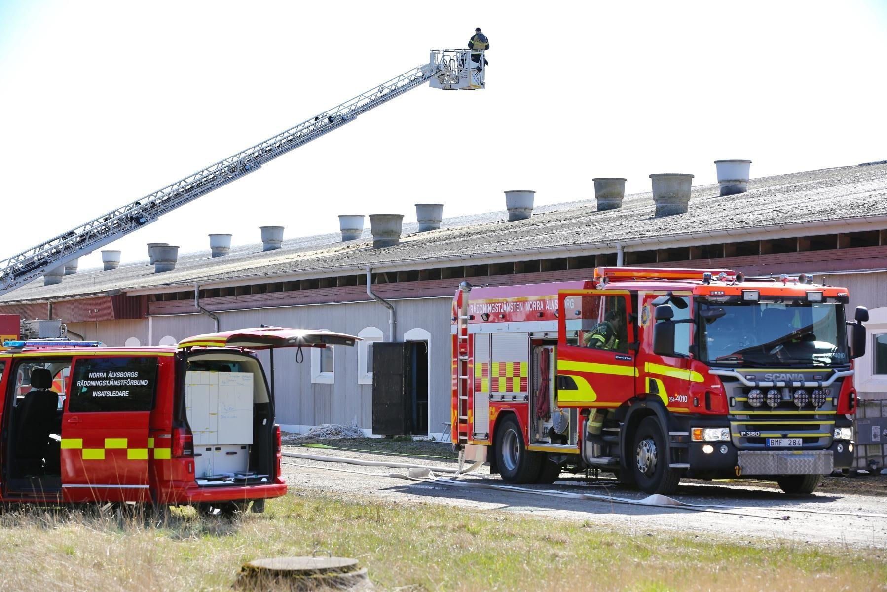 Räddningsstyrkor från flera enheter var på plats för att bekämpa branden.