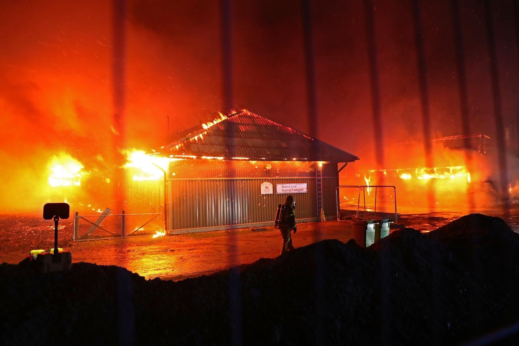 Över 130 djur har brunnit inne i nattens brand på Vreta utbildningscentrum.