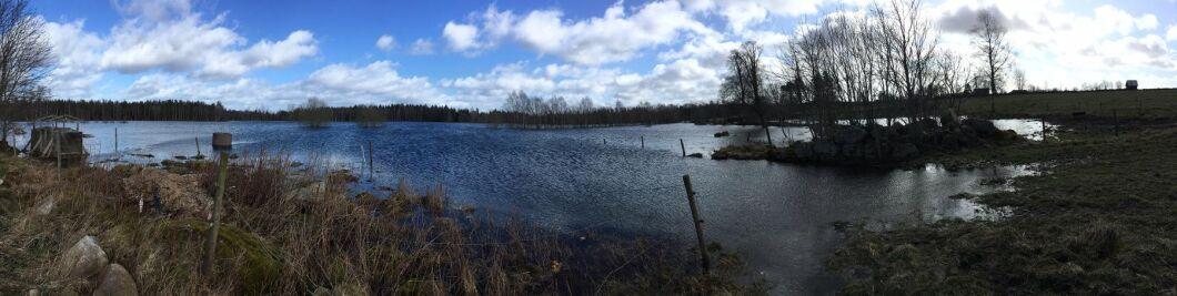 Panoramabild på Malin Holmquists marker.