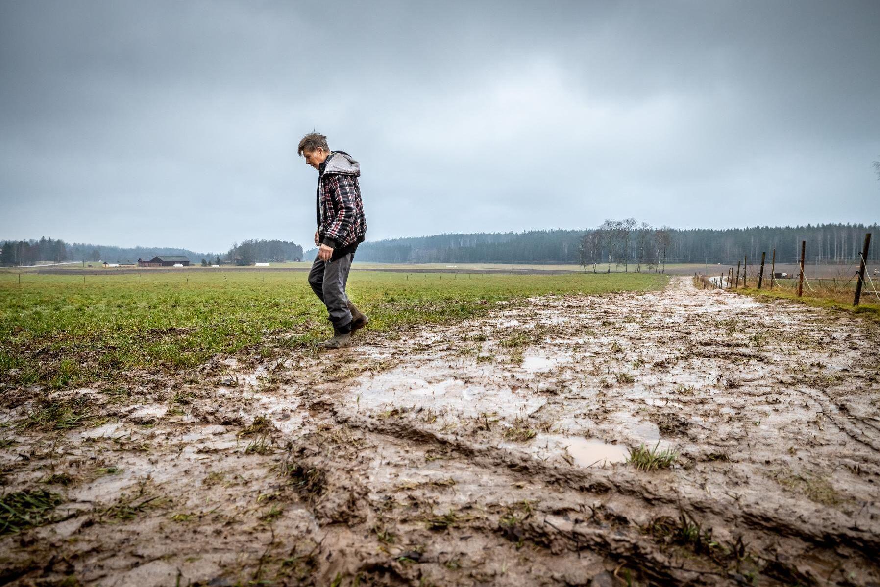 Sönderkörda vallar och beten blev följden av IP Onlys grävarbeten, berättar Harald Carlstedt.