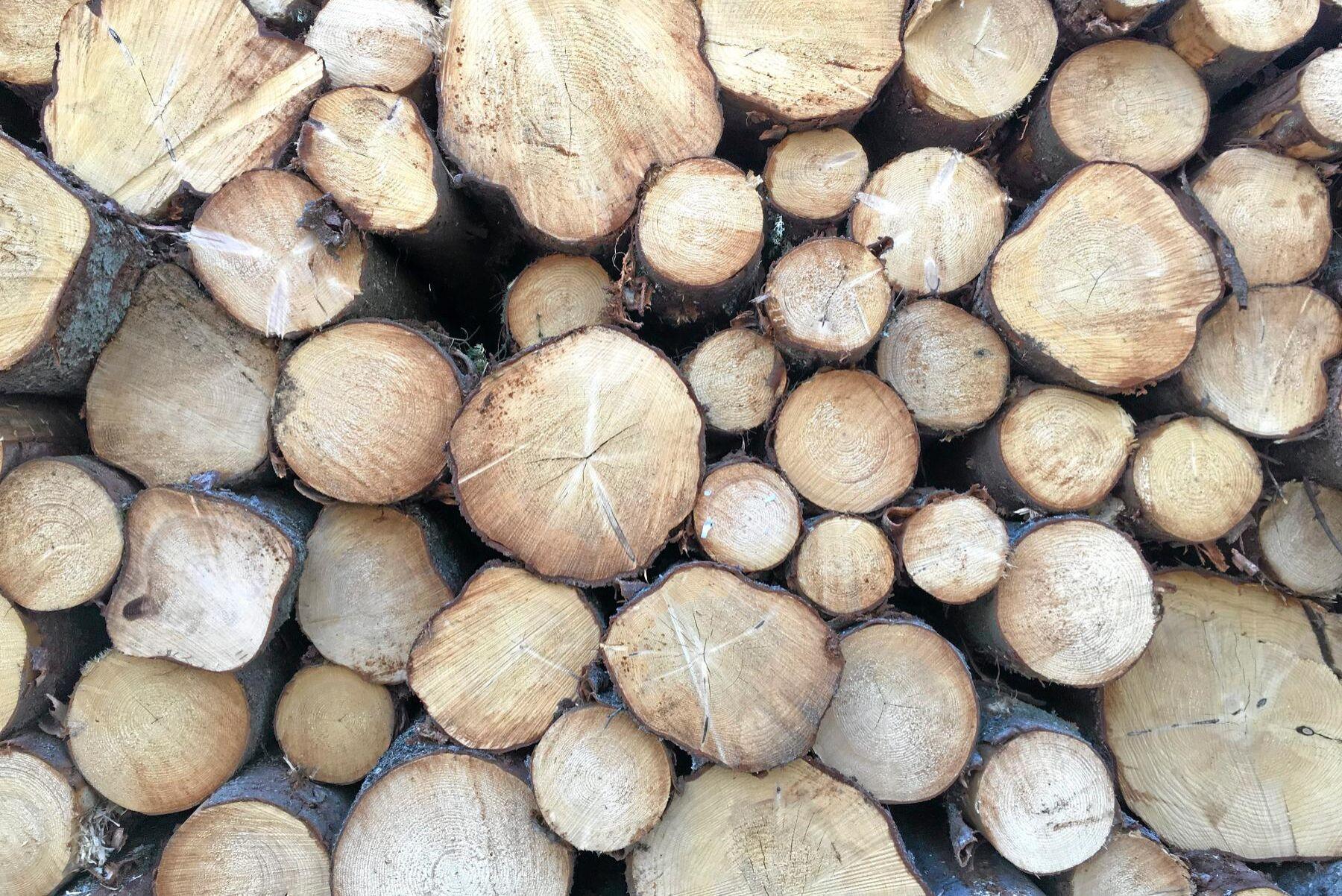 Alla virkes- och skogsbränsleupplag vid allmän väg måste ha tillstånd. Från årsskiftet blir det en handläggningsavgift på 2900 kronor för dessa.