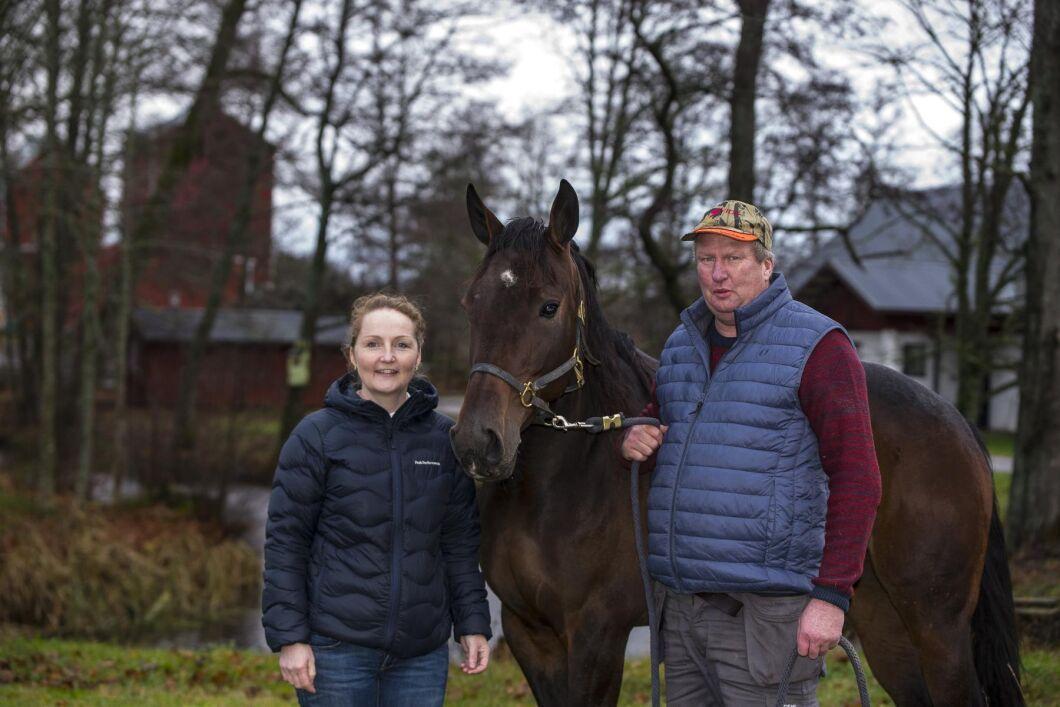 Madelen och Torbjörn Ohlzon hade hästarna som hobby innan de sadlade om. I dag har deras stuteri plats för 65 hästar.