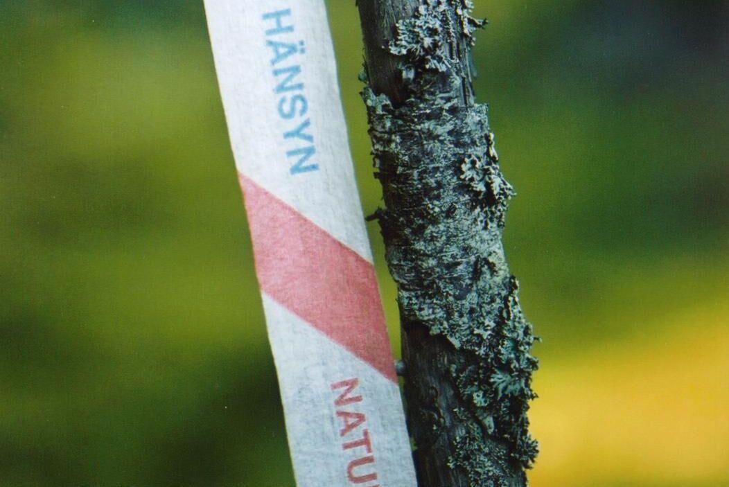 I stället för nyckelbiotopsinventeringen flyttas en del av ansvaret för att hålla koll på naturvärden i skogen över på skogsägaren genom miljöbalkens kunskapskrav.