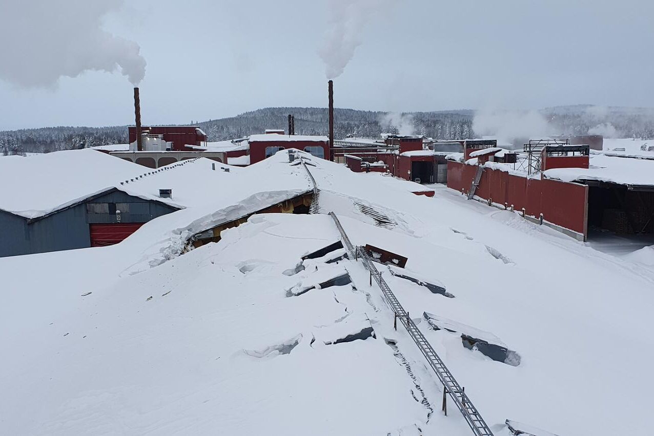 Tre sektioner, cirka 18 meter, av taket gav vika under snötrycket på en av Martinsons limträfabriker i slutet på januari. Men inga människor skadades och nu är produktionen i gång igen.