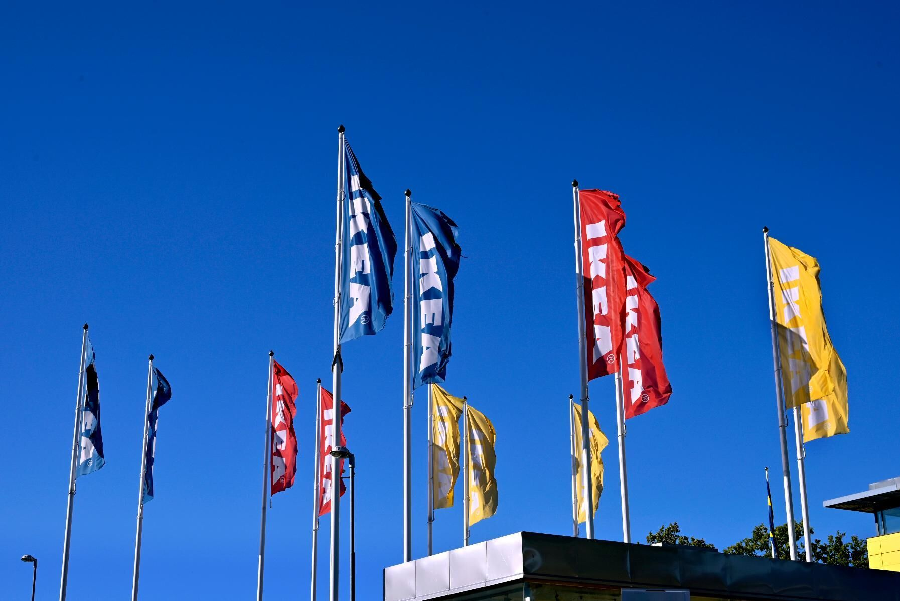 Ingka Group, som med franchiseavtal driver ett stort antal Ikea-varuhus runt om i världen, satsar på skogstillgångar för att uppfylla klimatmål. Arkivbild.