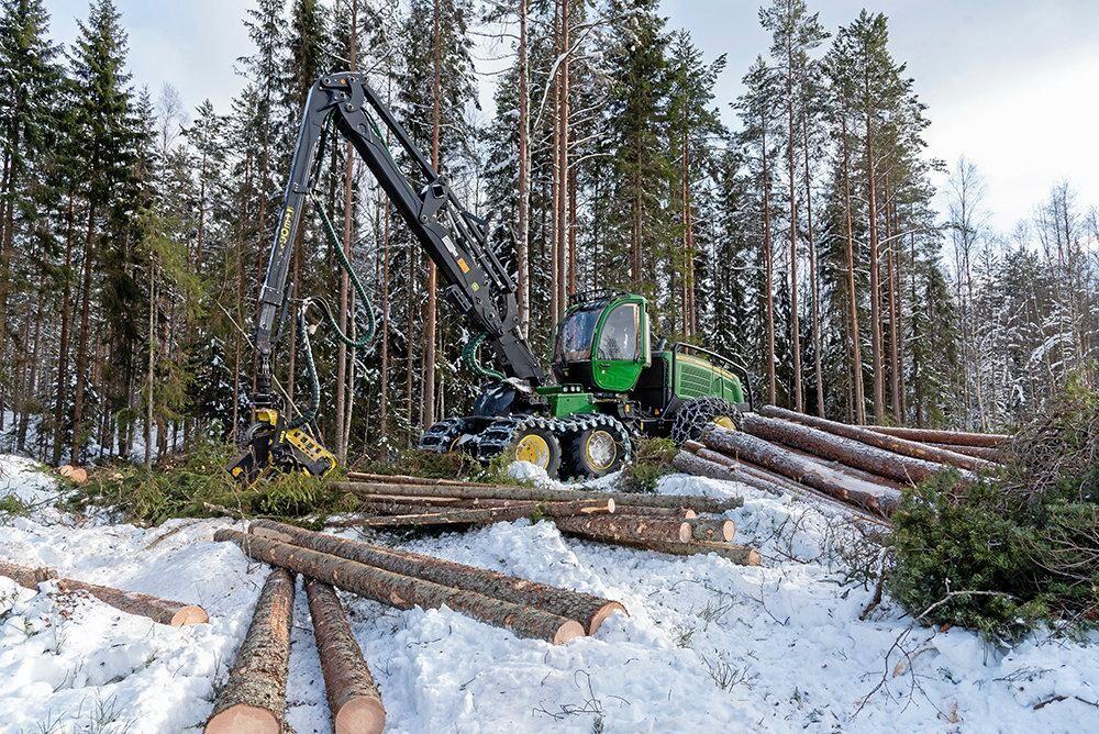 SCA måste avbryta avverkningar, sedan mark- och miljödomstolen kommit fram till att Skogsstyrelsen inte granskat skogsbolagets planer ordentligt. Bilden är tagen i ett annat sammanhang.