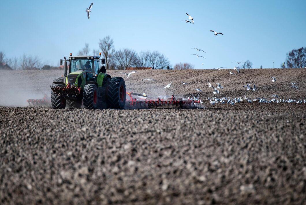 Bönder kan få tillbaka många tusen kronor i skatt genom att tanka fossildiesel. Arkivbild.