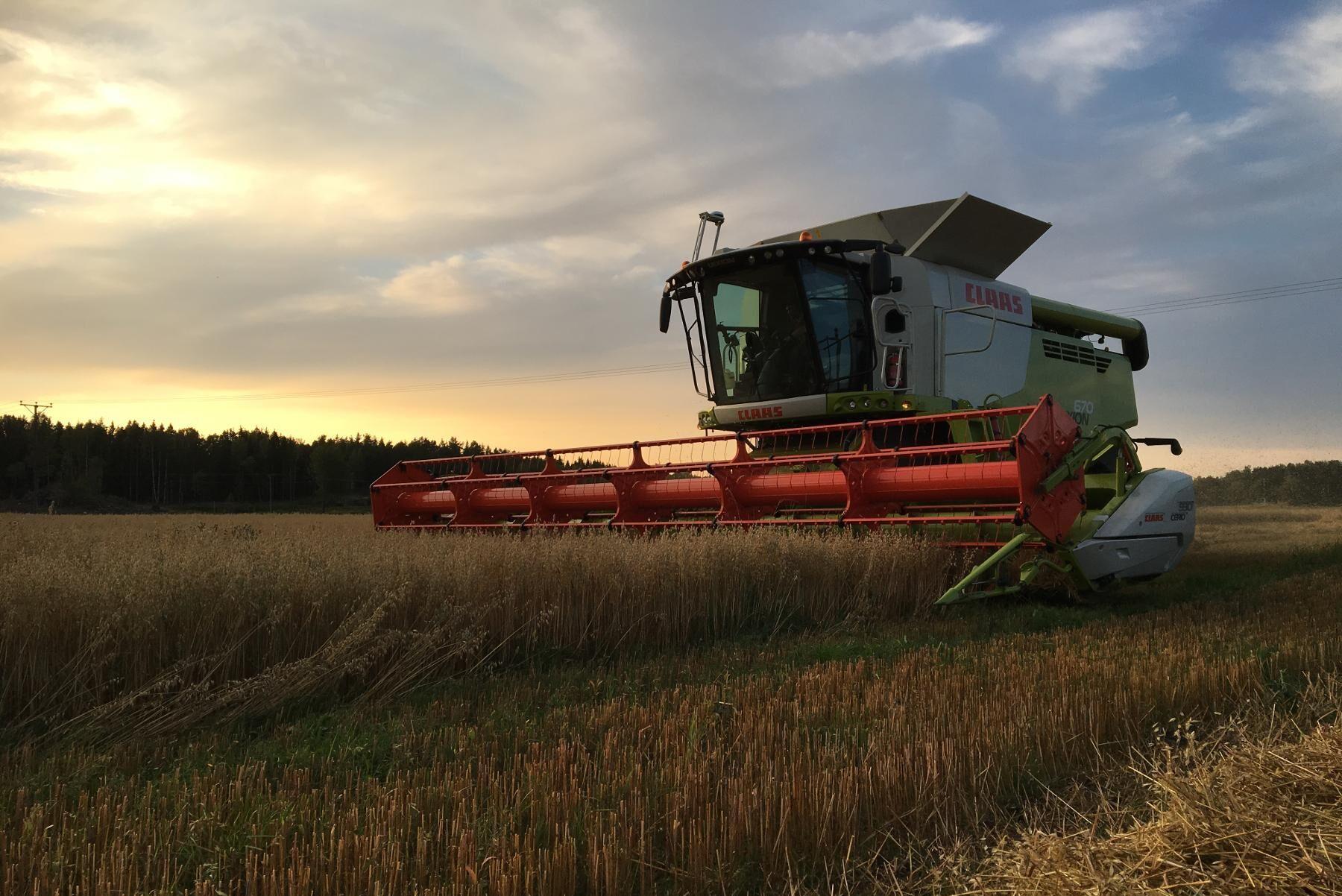 Det överlag pressade läget har medfört att vissa gårdar avbrutit omställningen till Kravproduktion.