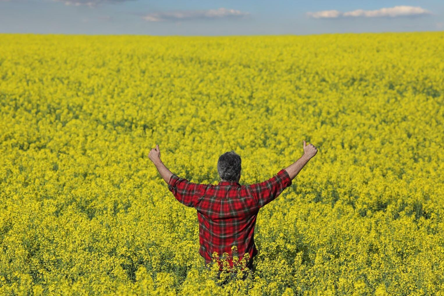 Andelen lantbrukare med en positiv syn på sin roll växer visar Landshypoteks senaste lantbrukarpanel.