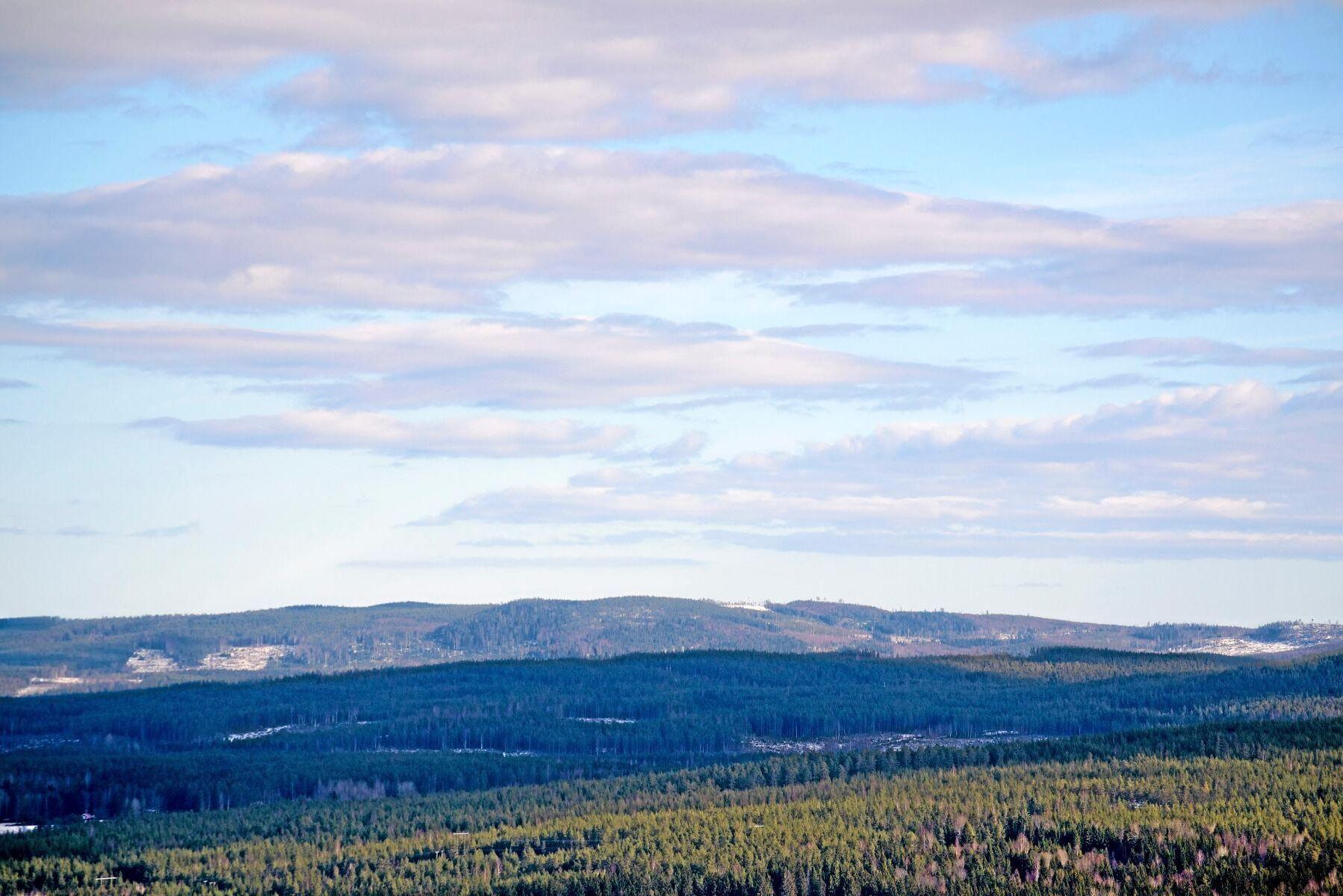 Mycket för pengarna. I norra Sverige räcker 3 miljoner kronor till 112 hektar med 11300 kubikmeter skog. I söder ger samma peng 26 hektar och 4200 kubikmeter, enligt LRF Konsults prisstatistik.