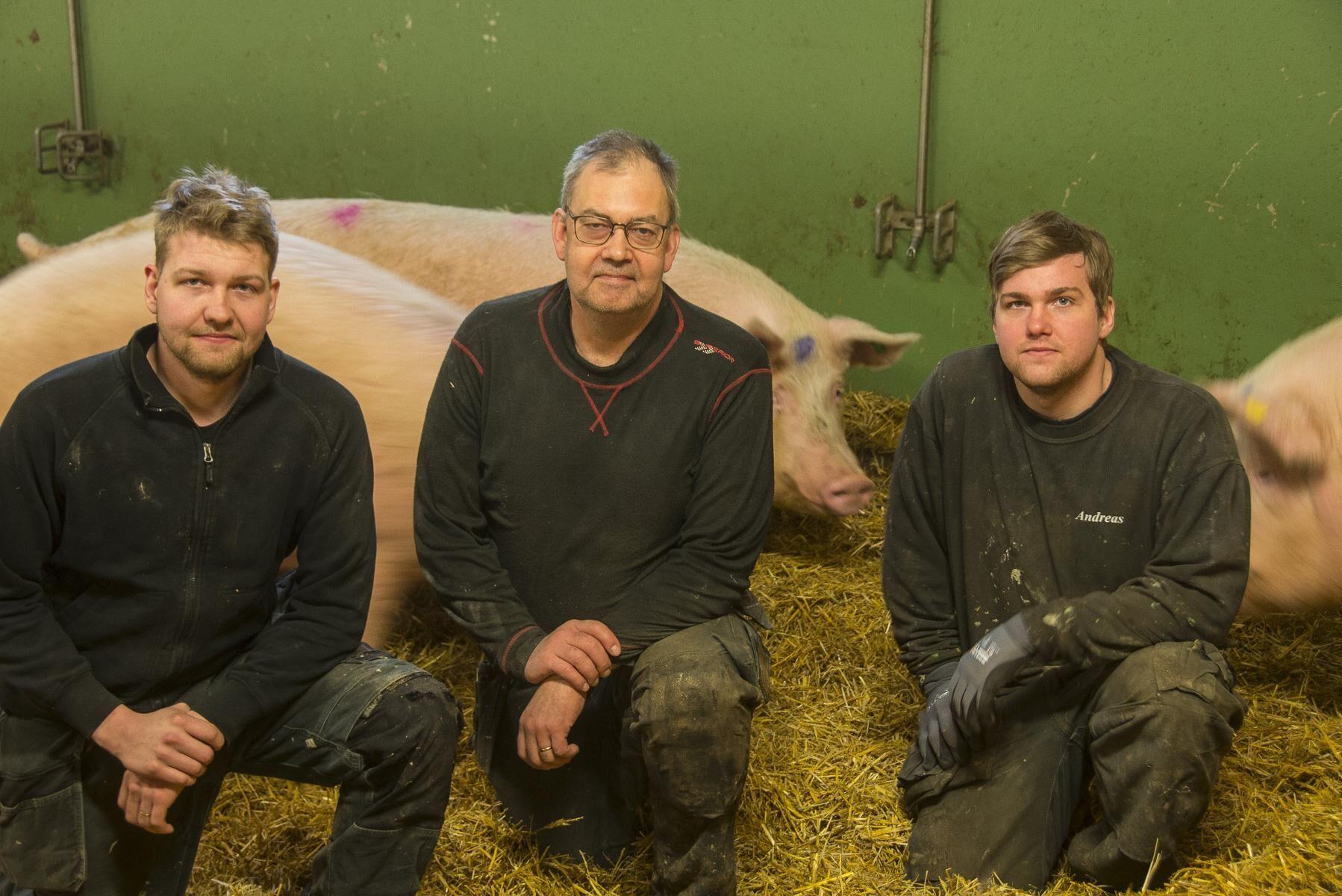 Andreas Persson (till vänster), pappa Anders Persson (mitten) och Johan Persson (till höger) driver Linfläcks gård tillsammans.