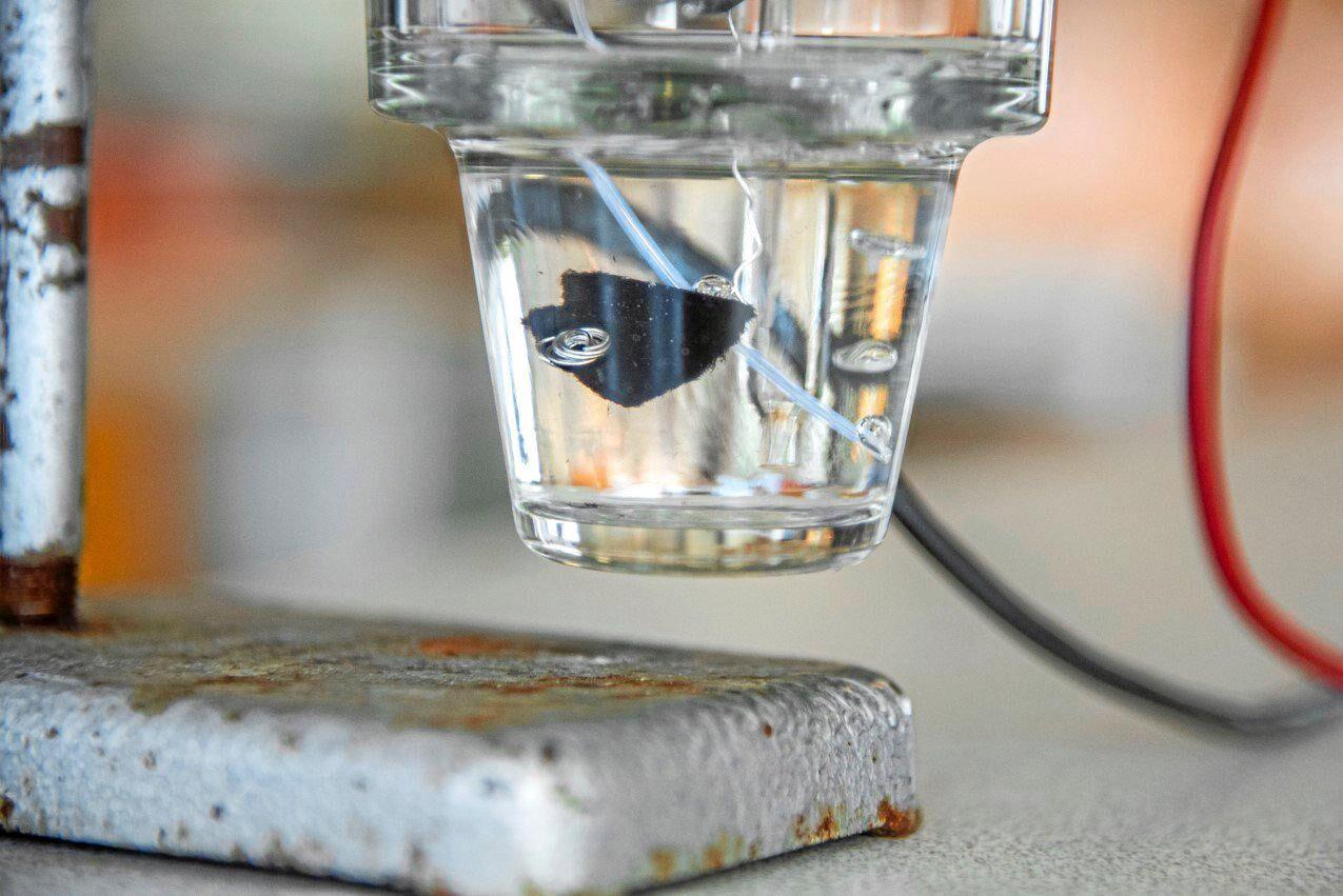 Genom att ytbehandla cellulosafibrer från trä med elektriskt ledande polymerer vill Billerud Korsnäs i samarbete med Uppsala universitet skapa ett batteri av papper.