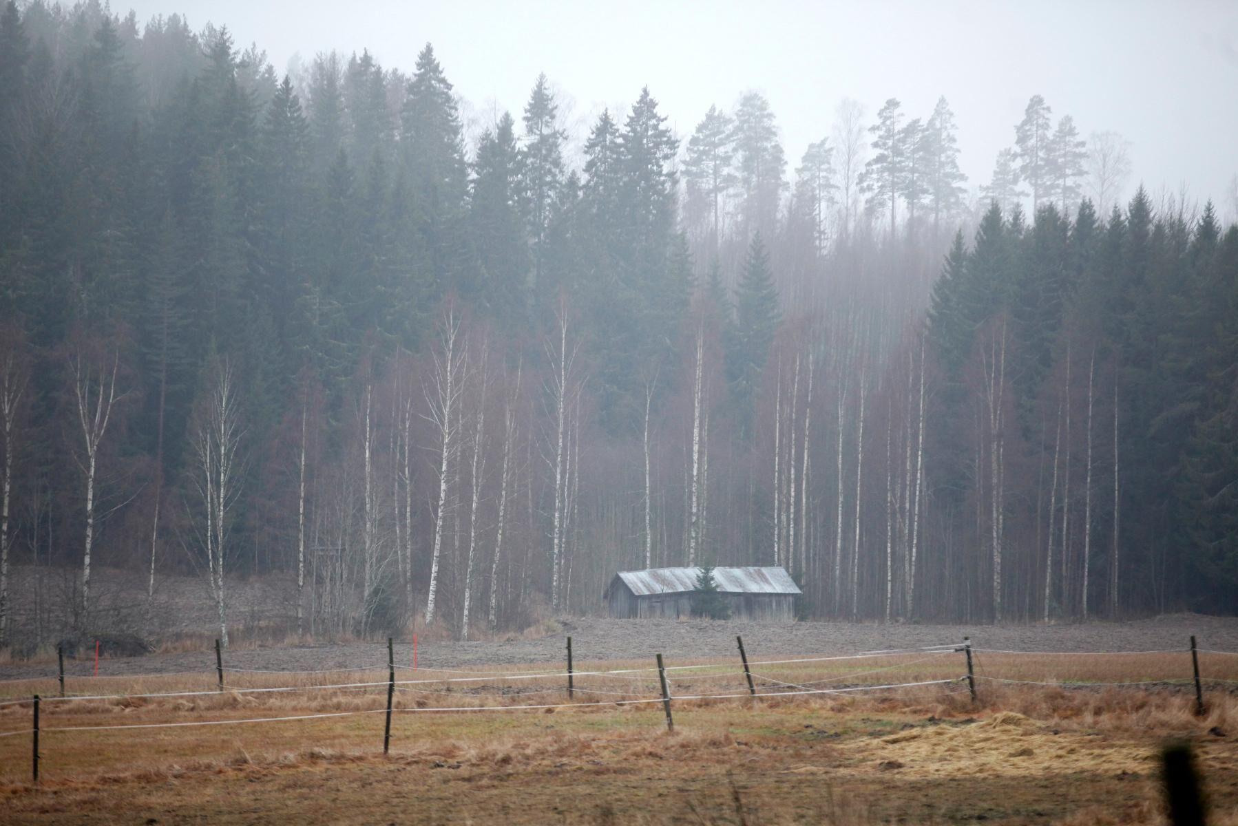 Förväntningarna på vad skogen ska leverera är höga.