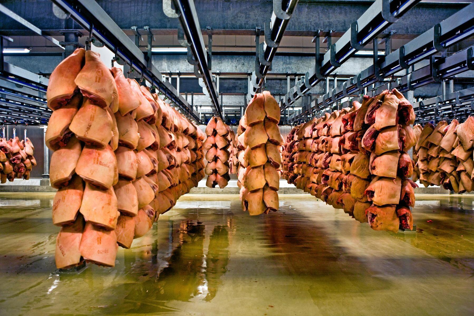 Exporten till Kina från slakteriet i Horsens ligger nere för tillfället.