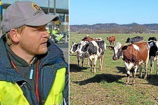 Enligt Juha Toropainen, länsveterinär i Kristianstad, är reglerna för betessläpp enkla: finns det tillväxt i gräset är det okej att släppa ut djuren.